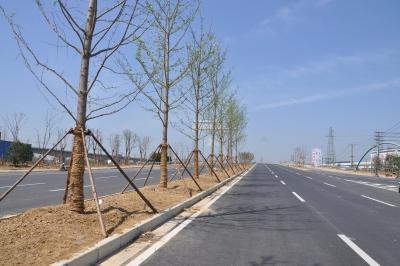中惠大道西延新建项目主体工程完工
